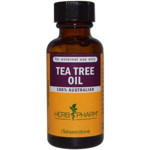 اماكن بيع زيت شجرة الشاي